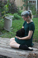 Getting To Know Her (m.gifford) Tags: tibi whoodle puppy ourpuppy hazel