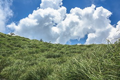 Cloud & Grass............ (Evo-PlayLoud) Tags: canoneos550d canon550d canon 550d 18135mm 18135mmkit efs18135mmf3556 efs cloud clouds grass green grassland mountain mountains sky blue bluesky landscape scenery mtyangming yangmingshan            taipei taiwan