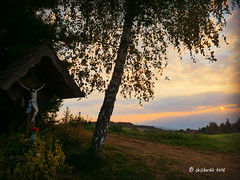 autumn beginning (skistar64) Tags: herbst autumn herbstbeginn debriacherweide gurktal morgen morning morgenlicht daham drausen outdoor outside pisweg krnten carinthia