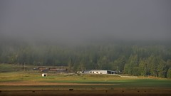 Morning mist over the ranch house - Kootenay River Valley, Rocky Mountain Foothills, Southern British Columbia (edk7) Tags: nikond300 nikonnikkor18200mm13556gedifafsvrdx edk7 2008 canada britishcolumbia southernbritishcolumbia bc rockymountains kootenayriver kootenayrivervalley ranch landscape earlymorning mist fog beautiful vista country countryside rural farm stock cattle