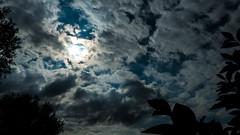 P1030295 (seanhigson) Tags: sky night moody clouds sun dark fz200