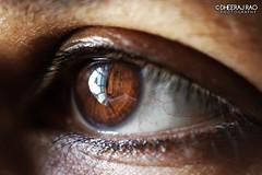 The Eye (Dheeraj Clickr Rao) Tags: macro eye closeup macrophotography humaneye raynox raynoxdcr250 canoneos550d
