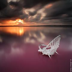 Ringside (Carlos J. Teruel) Tags: sunset salinas tokina cielo nubes sal reflejos lightroom torrevieja d300 lr4 xaviersam bigstopper singhraydarylbensonnd3revgrad onlyraw leebigstopper carlosjteruel