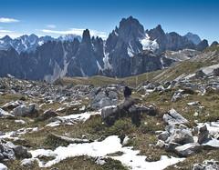 Dolomitenwanderweg II (Thomas Mayer) Tags: italien italy white black berg italia south berge schwarz tyrol dolomiti sdtirol dolomiten weis