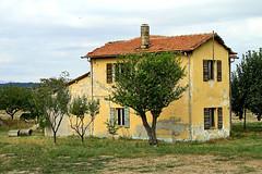 NICE  house ! (marvin 345) Tags: old italy house classic casa italia historic oldhouse emiliaromagna vecchio romagna vecchia vecchie storiche
