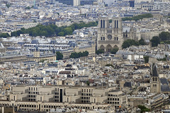 Notre Dame From Eiffel Tower. (robbie ...) Tags: city summer paris france tower skyline europe rivets steel capital eiffeltower aerialview eiffel aerial tourists structure fromabove touristspot 2012 solid iconicbuilding 70300vr iconiclandmark nikond300