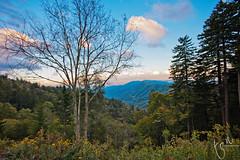 Great Smoky Mountains II (Ton Ten) Tags: light sunset sky mountains colors landscape great smoky tonten cz18