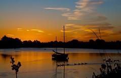 Fairlop Sunrise (ts446) Tags: autumn lake reflection bird water silhouette sunrise boat duck nikon bbc essex redbridge 18200mm digitalcameraclub fairlop d7000 bbcautumnwatch ts446