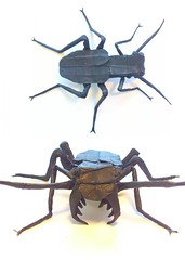 tiger beetle (OrigamiFanPete) Tags: art animal bug paper insect design origami box critter tiger beetle cp creature crease paperfolding folding arthropod coleoptera pleating cicindela carabidae pleat cicindelidae cicindelinae apttern