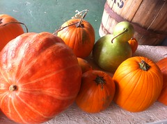 (JoulesVintage) Tags: autumn mountains fall pumpkins cider squash applewoodchips