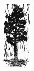 Los árboles (AraXilos) Tags: propaganda imagen propa estampa grabado xilo xilografia ara3xilos