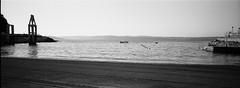 praia de San Amaro (anxolop) Tags: xpan hc110b kodak hc110 131 development filmisnotdead revelado