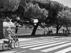 Summertime (Pablo Germade) Tags: summer verano viaje trip travel rio river sea mar bidasoa cantabrico paisvasco basquecountry hondarribia euskadi people person gente urban urbana callejera street byn bw blancoynegro blackandwhte pablogermade olympus omd em5 bicicleta bike trees arboles