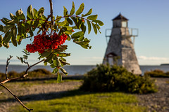 berries & light (Mr. Gee) Tags: 2016 canon hecla heclaisland manitoba lighthouse shore