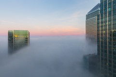 A Sea of Fog (www.paulshearsphotography.com) Tags: 120second 2470mmf28l 24mm 6d architecture building canarywharf canoneos6d city cityscape cloud clouds dawn docklands ef2470mmf28liiusm fog foggy green headoffice highrise iso400 jpmorgan lenskirt london mist misty morning office paulshears paulshearsphotography pink skyscraper sunrise uk unitedkingdom urban urbanlandscape f8 wwwpaulshearsphotographycouk