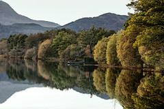 Autumn Leaves (Grant Morris) Tags: lochard loch reflection autumncolours tree water scotland grantmorris grantmorrisphotography canon