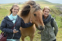 Daughters and Horse (Darrell Neufeld) Tags: horse shetlandislands hiking lerwick animals