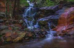 Por rocas y hayas. (antoniocamero21) Tags: montseny catalunya color foto sony natural parque barcelona rocas hayas