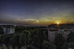 Cielo de Miln (libretacanaria) Tags: miln milano cielo sky nocturna italia italy rboles naturaleza urbana
