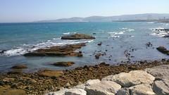 morning walk (hafssa_13) Tags: sea plage beach blue bleu soleil sun sunset tangier tanger morocco maroc birds nature naturelovers