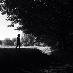 time of day (Pea Jay How) Tags: child trees outdoor outdoors nature park silhouette boy boys children childhood sun shadow sunlight square bw blackandwhite mono monochrome