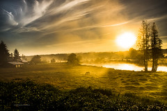 Living Easy (jeanmarie (been working lots of overtime)) Tags: jeanmarieshelton jeanmarie landscape light water river sky sunlight sunrise serene shadows horse pasture clouds fog mist haze nikon nature morning outdoors