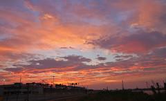 IMG_9780s (michael.soukup) Tags: newyorkcity newyork manhattan skyline sunset cityscape worldtradecenter worldfinancialcenter statueofliberty purple dusk newjersey harbor empirestate nyc