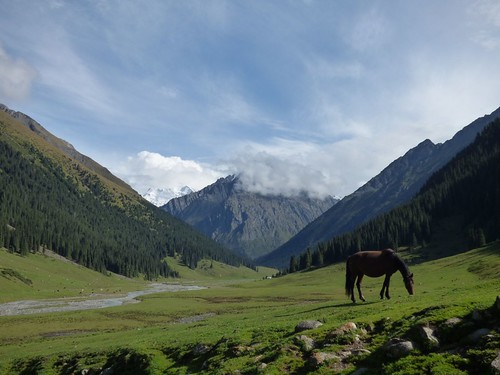 """Altynarachan Valley • <a style=""""font-size:0.8em;"""" href=""""http://www.flickr.com/photos/144983949@N02/29317563892/"""" target=""""_blank"""">View on Flickr</a>"""