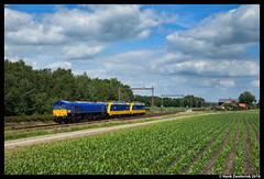 Beacon Rail 561-03, Holten 19-06-2016 (Henk Zwoferink) Tags: beacon rail henk zwoferink ns nsr traxx emd class66 bombardier 186 024 023 holten rrf 56103