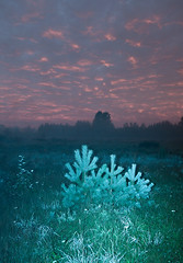 untitled-6293 (Johann Kp) Tags: tallinn estonia early morning flash digital photography canon 5d mk2 2470 night darkness light colour colourful sunrise clouds sky conrast surreal experimental mood moody fog foggy mist blue field tree nature suburb dream