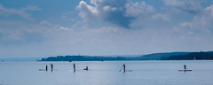 Stand Up-Paddlers (M3irsens) Tags: 2016 bodensee flickr jona journalistenakademie juli lebensqualitt multimedia berlingen