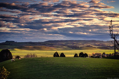 Early evening view (Kevin_Jeffries) Tags: nikon nikkor d90 jeffries 50mm sheep grazing cloud