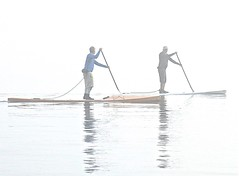 (~SG) Tags: paddling paddleboarder sup water fog repetition hss