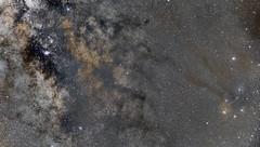 Milky Way Madness (joeybocc1) Tags: discover explore nikonusa nikkor nikon longexposure science galactic galaxy stars space universetoday universe milkyway astronomy astronomers astrophotography