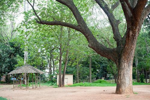 Bengaluru 2016 - Indira Gandhi Musical Fountain Park - DSC07667.jpg