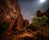 Night in the garden (PT Photo) Tags: moonburst moon night dark vertorama stitched stars lightroom5 pse12 sigma1020mm oak rocks gardenofthegodspark colorado lightpainting