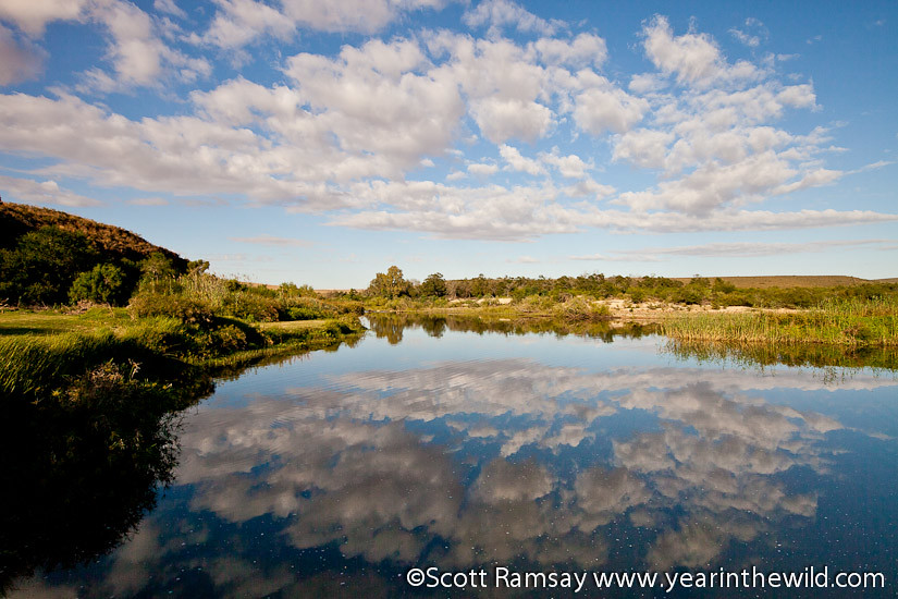 Bontebok National Park - South Africa