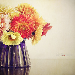 september (silviaON) Tags: dahlia flower g september vase bouquet textured 2012 memoriesbook floralessence bsactions oracope flypapertextures alledgesactions
