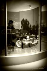 on display (joannemariol) Tags: auto classic vintage classiccar retro nostalgia americana studebaker joannemariol joannemariolphotographics classiccarphotography