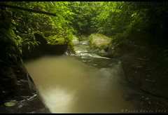 ..way to Halam Falls..(iv) (pusan_sm) Tags: green slowshutter sylhet bangladesh moulvibazar nikkor1870mm nikond90 nikonflickraward gettyimagesbangladeshq2 halamfalls