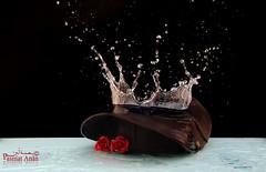 5\6 سبلاش قبوعي :) (Fatimah Alzwyed .. Instagram:fatimahalzwyed) Tags: red brown hat rose splash ورد اسود بني احمر محاولات قبعه بصمة تجميد ورشه سبلاش أنين
