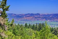 California Napa Valley 5 (paspog) Tags: california usa vines wine unitedstatesofamerica vineyards napavalley vignes vignobles