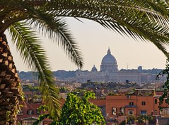 Tropical Rome - view towards Vatican City (Maria_Globetrotter) Tags: city italien italy vatican rome roma june de day hill capital palm unesco clear vaticano pedro tropical praa rom so unescoworldheritage itlia 2012 whs vaticancity baslica kulle vatikanen praadesopedro