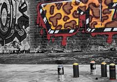 Graffitti (SeanD69) Tags: newcastle sage graffitti selectivecolour msh0912 msh091210