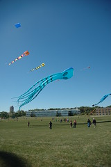 Kites over 100 ft long