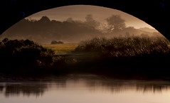 underneath the arch (yadrad) Tags: mist sunrise dartmoor cadover dartmoornationalpark riverplym cadoverbridge