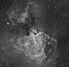 M17 (NGC6618) H-Alpha crop (Terry Hancock www.downunderobservatory.com) Tags: camera sky monochrome night stars photography mono pier back swan backyard fotografie photos thomas space omega ngc shed science images astro apo sagittarius m observatory telescope nebula astrophotography lobster astronomy imaging horseshoe messier ccd universe cosmos paramount luminance m17 lodestar teleskop astronomie byo refractor deepsky f55 halpha checkmark narrowband 6618 astrograph autoguider starlightxpress tmb92ss mks4000 gt1100s qhy9m