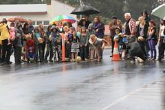Pumpkin Festival (superholly0926) Tags: australia perth twinlakes pemberton westernaustralia pumpkinfestival  manjimup    southwestofwa