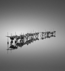 Harvest (vulture labs) Tags: longexposure blackandwhite fishing zen nets minimalist fineartphotography vulturelabs