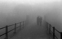Pushing Tri-x (_Moliveira) Tags: fog foggy haze misty street urban kodak bw fm2 epson v370 old